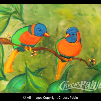 Orange Drop Birds
