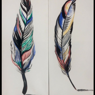 Feathers Together